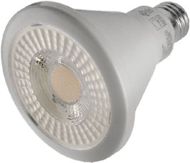 PAR & R Style LED<br />Bulbs